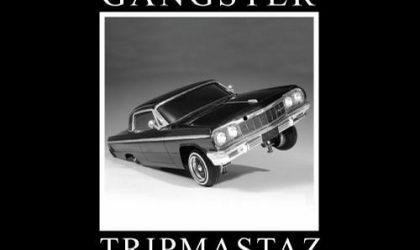 Tripmastaz feat Sneak – Roll Back (I'm A House Gangster) 8/10