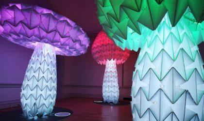 В Смитсоновском институте открылась официальная выставка Burning Man. Смотрите видео