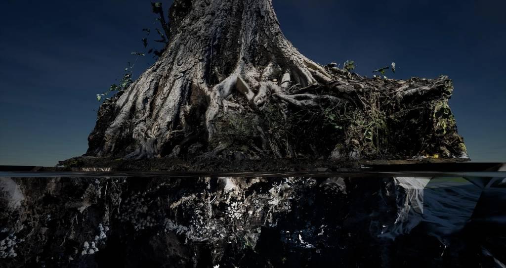 Berghain выставит арт-инсталляцию, вдохновленную болотом, на месте которого возник Берлин